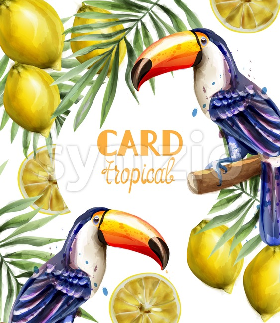 Toucan and lemon tropic card Vector watercolor. Exotic summer template Stock Vector