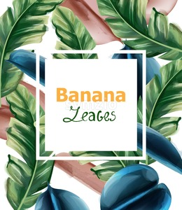 Banana leaves Vector watercolor background. Tropic exotic card. Summer season template Stock Vector