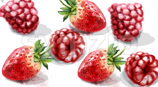 Raspberry and strawberry Vector watercolor. Juicy banner summer poster Stock Vector