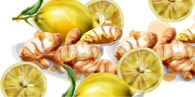 Lemon and ginger watercolor Vector background. fresh organic products banner Stock Vector