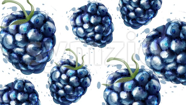 Blackberries pattern background Vector watercolor. Summer delicious fruits card