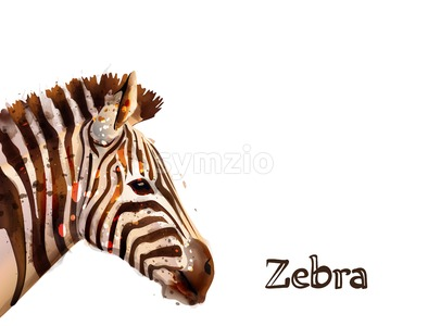 Zebra isolated on white background Vector watercolor. wildlife safari animal Stock Vector