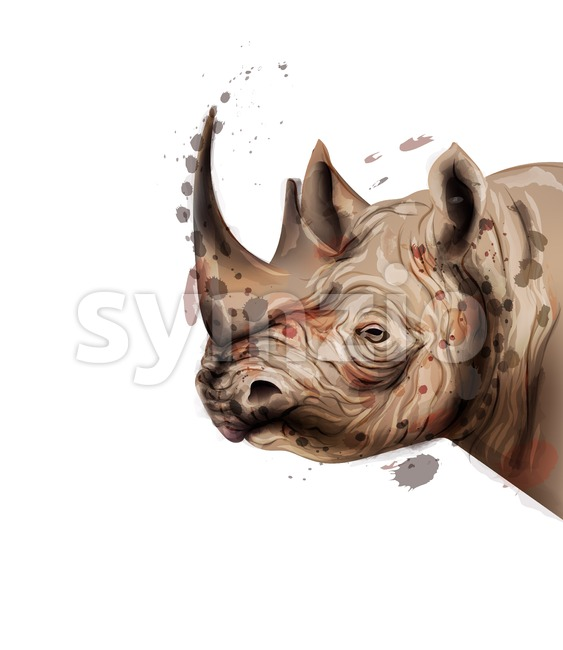Rhino Vector watercolor. Wildlife animal illustration on white background Stock Vector