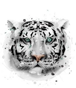 White Tiger vector watercolor. Wildlife animal front view illustration Stock Vector