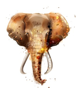 Elephant vector watercolor. Wildlife animal front view illustration Stock Vector