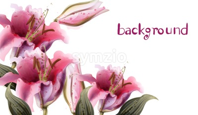 Pink lily flowers Vector watercolor. Summer floral background Stock Vector
