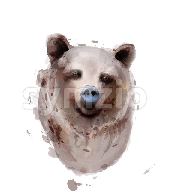 Bear Vector watercolor isolated on white. Wildlife animals illustration Stock Vector