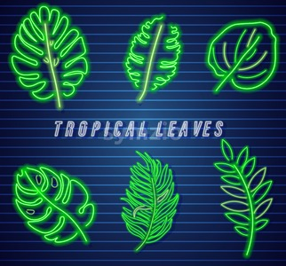 Tropic leaves neon set Vector. Detailed template collection Stock Vector