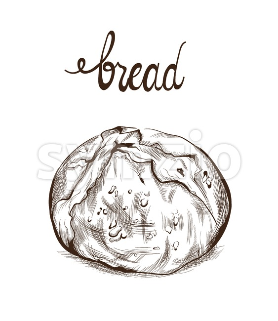 Bread Vector lineart. Vintage homemade bakery menu decor Stock Vector