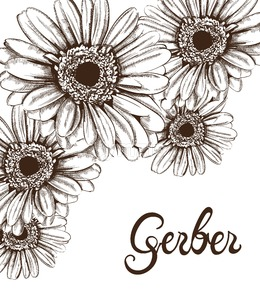 Vintage sunflower wreath card Vector line art. Boho style poster Stock Vector