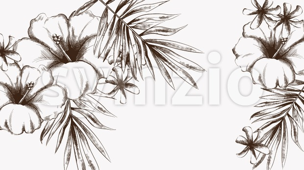Tropic flowers summer background Vector line art. Vintage style Stock Vector