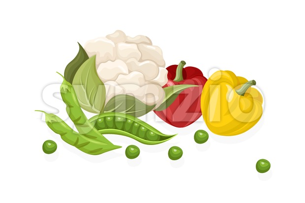 Cauliflower, chilli, greens set. Store shop label isolated poster advertise