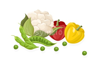 Cauliflower, chilli, greens set. Store shop label isolated poster advertise Stock Vector