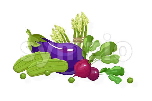 Eggplant, radish, greens set. Store shop label isolated poster advertise Stock Vector
