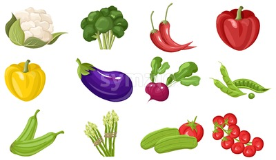 Farm fresh vegetables Vector set. Store shop grocery detailed illustrations poster Stock Vector