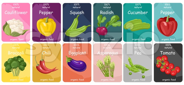 Vegetables labels Vector flat style. Cauliflower, pepper, cherry tomatoes set collection Stock Vector