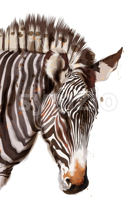 Zebra Vector watercolor isolated on white. Painted style illustration Stock Vector