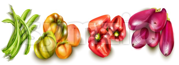 Vegetables eggplant, pepper, yellow tomatoes Vector watercolor Stock Vector