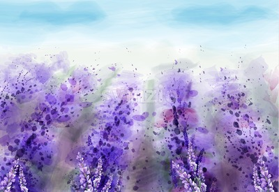 Lavender field Vector watercolor. Provence vintage background. Beautiful flowers painted style Stock Vector