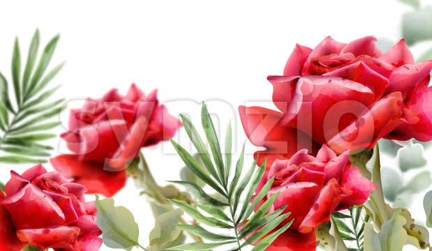 Red roses Vector watercolor. Vintage floral frame decor. Exotic background