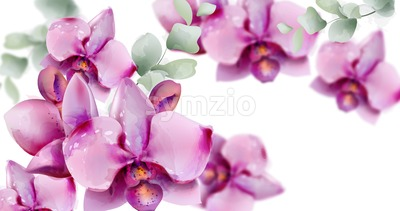 Orchid flowers Vector watercolor. Summer floral pattern background Stock Vector