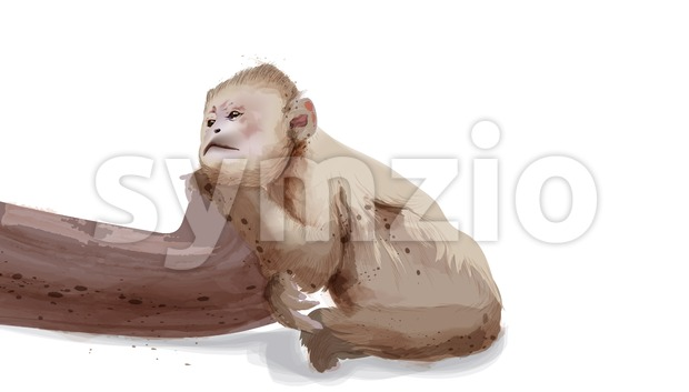 Sad monkey Vector watercolor isolated on white illustration