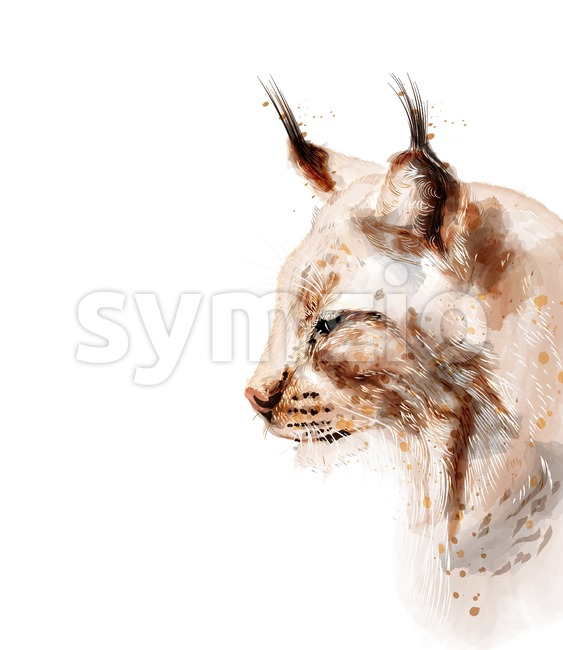 Lynx vector watercolor isolated on white background. Animal lovely portrait Stock Vector