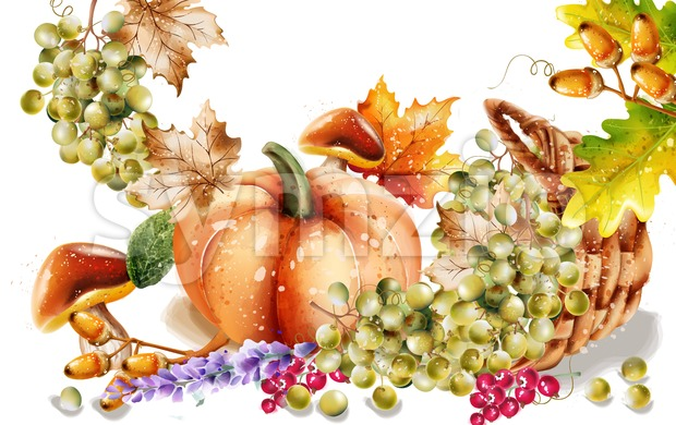 Autumn fall vegetables Vector watercolor. pumpkin harvests illustration Stock Vector
