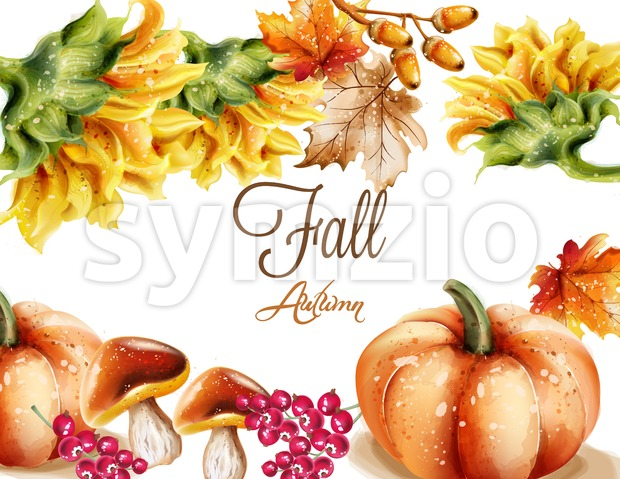 Autumn Fall card Vector watercolor. pumpkin, sunflower and mushrooms illustration