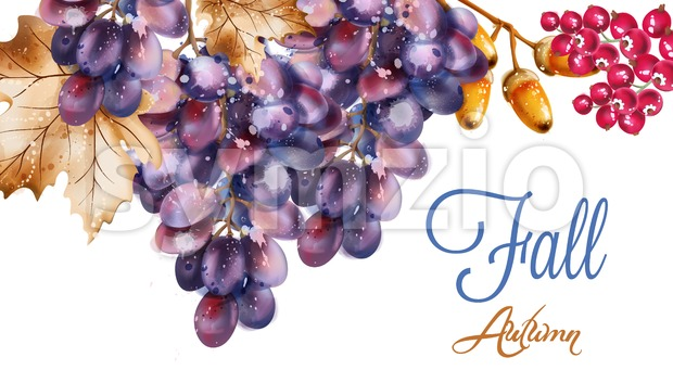 Grapes vector watercolor. Autumn fall harvest background Stock Vector