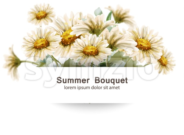 Daisy flowers bouquet Vector watercolor. Summer decor floral bouquets card poster