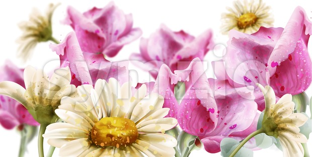 Spring summer card flowers watercolor Vector. Daisy and roses flowers decor background
