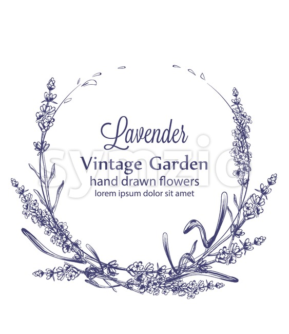 Lavender wreath Vector vintage line art. Provence floral decor hand drawn. Summer wedding ceremony delicate poster Stock Vector