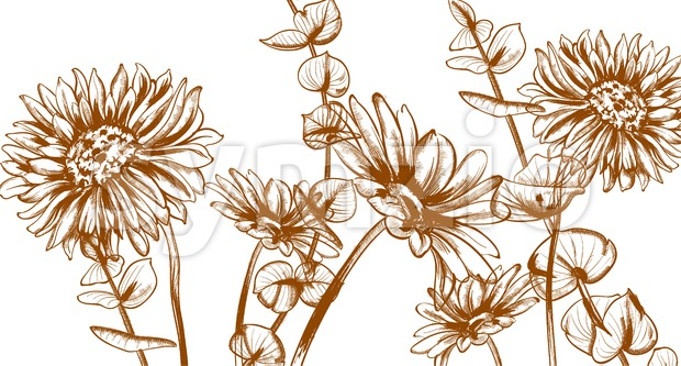 Daisy flowers line art Vector. Hand drawn summer floral background Stock Vector