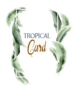 Green card leaves Vector watercolor. Summer round tropic botanical poster Stock Vector