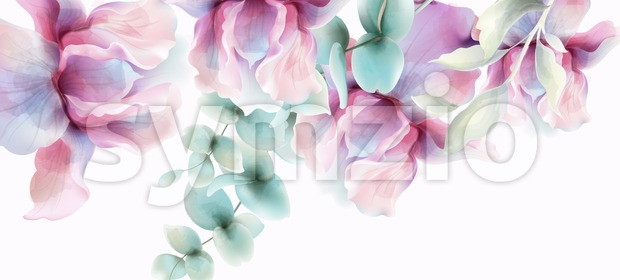 Transparent Flowers Vector watercolor. Provence rustic poster. Wedding card, birthday ceremony event decor