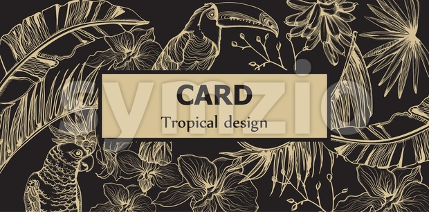 Tropic parrot card Vector line art . Exotic pattern leaves decors. Summer Party poster Dark background