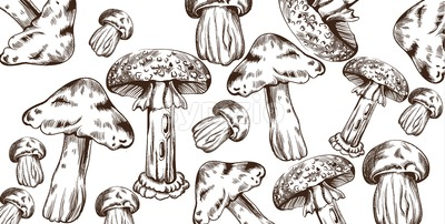 Mushrooms vector line art pattern. Autumn fall veggies background Stock Vector