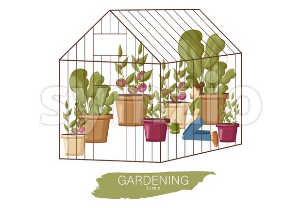 Woman working in the greenhouse Vector flat style. Growing plants and flowers. Cage garden concept