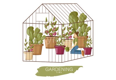 Woman working in the greenhouse Vector flat style. Growing plants and flowers. Cage garden concept Stock Vector