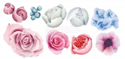 Watercolor colorful berries, roses, orchid and peony flowers. Vector Stock Vector