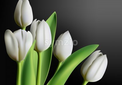 Realistic three dimensional white tulip flowers on black gradient background. Vector Stock Vector