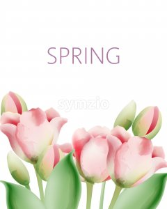 Watercolor tulip flowers with green leaves and place for text. Vector Stock Vector