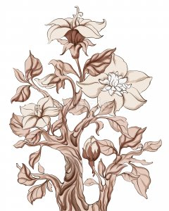 Abstract gladiolus flowers with stem in monochrome style. Vector Stock Vector