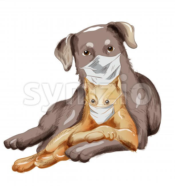 Dog and cat friends with disposable mask. Corona Virus among pets idea. Vector Stock Vector