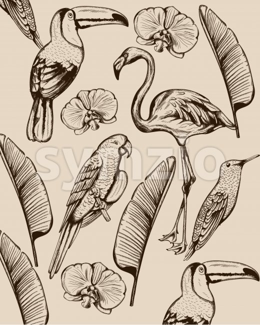 Line art composition of tropical animals and leaves. Flamingo, tucano bird, parrot and swallow. Vector Stock Vector