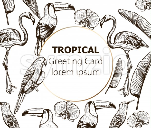 Line art composition of tropical animals and leaves. Flamingo, tucano bird, parrot and swallow. Place for text. Vector Stock Vector