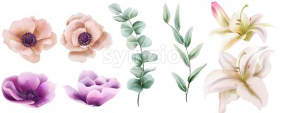 Watercolor set of lily and peony flowers with green leaves. Vector Stock Vector