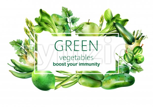 Composition with a lot of green vegetables in watercolor style. Fennel, zucchini, bette, parsley, apple, goose berry, beans, chili, lime, pepper Stock Vector