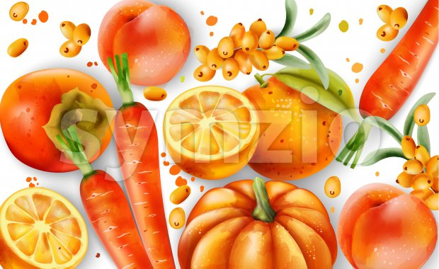 Composition of orange fruits and vegetables. Oranges, carrots, pumpkin, peaches and pyracantha berries. Vector